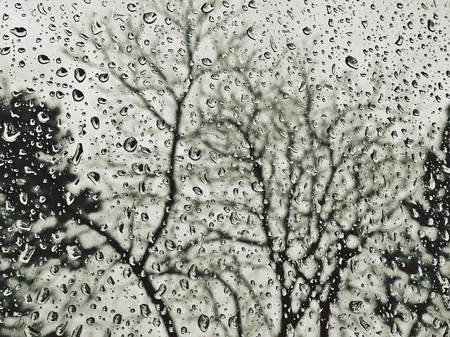 Il recupero dell'acqua piovana: tutto quello che c'è da sapere